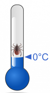 Tick on thermometer at 0°C